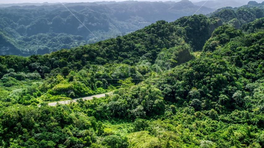 Highway through jungle in the Karst Forest, Puerto Rico  Aerial Stock Photos | AX101_077.0000000F