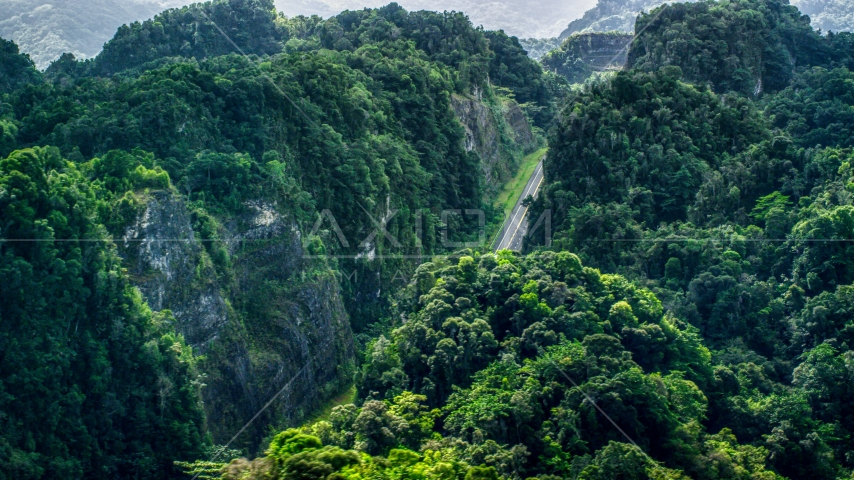 A highway cutting through lush green mountains, Karst Forest, Puerto Rico Aerial Stock Photo AX101_086.0000000F | Axiom Images