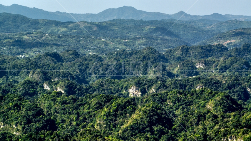Lush green jungle and limestone cliffs of the Karst Forest, Puerto Rico Aerial Stock Photo AX101_089.0000000F | Axiom Images
