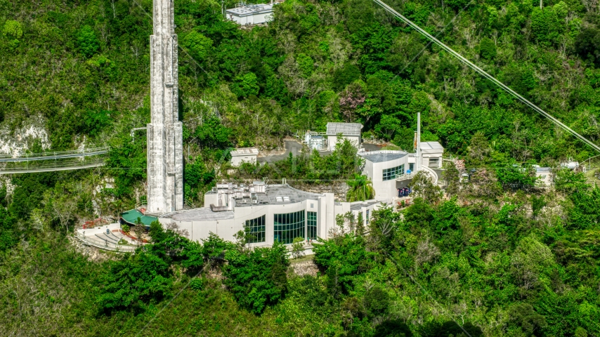 Arecibo Observatory building set among trees, Puerto Rico Aerial Stock Photos | AX101_102.0000000F