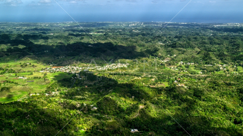 Rural homes situated among lush green trees in Karst mountains, Arecibo, Puerto Rico  Aerial Stock Photos | AX101_124.0000000F
