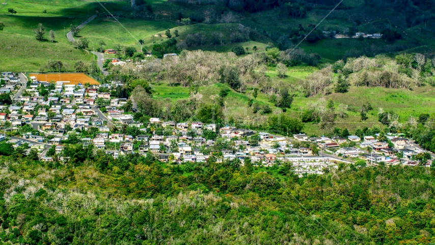 Small rural neighborhood nestled among trees Arecibo, Puerto Rico Aerial Stock Photos | AX101_126.0000000F