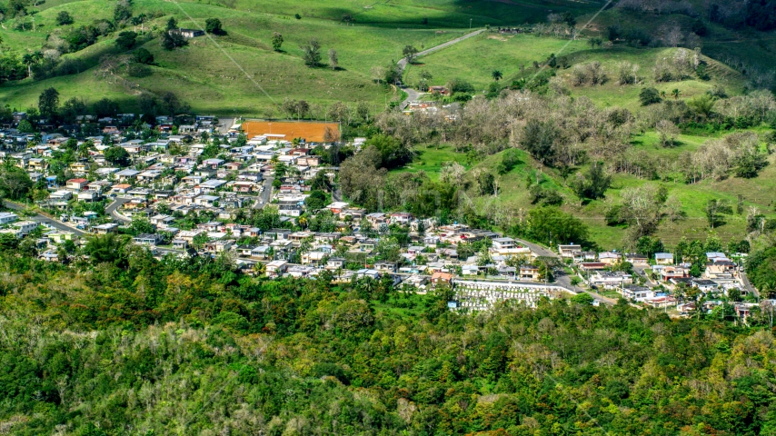 Small rural neighborhood surrounded by trees, Arecibo, Puerto Rico  Aerial Stock Photos | AX101_127.0000000F
