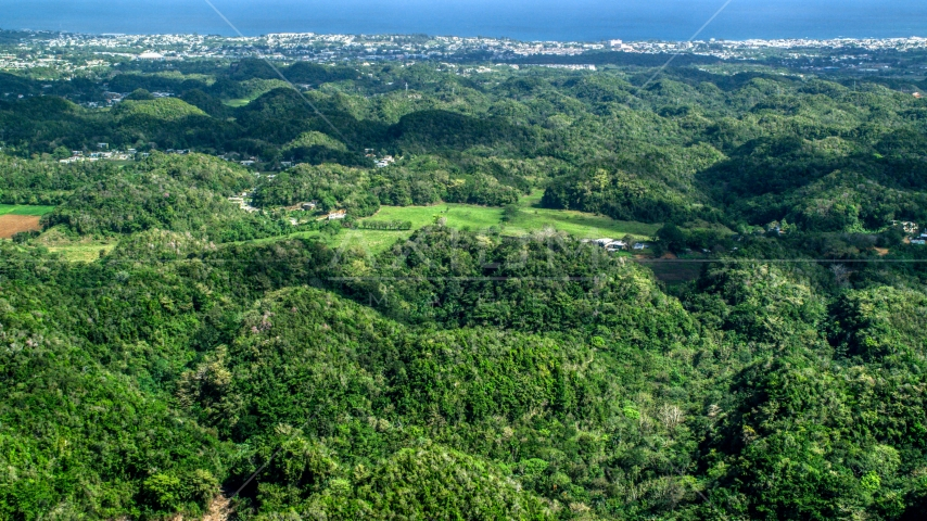 Tree covered hills and rural homes near the coast, Arecibo, Puerto Rico  Aerial Stock Photo AX101_128.0000000F | Axiom Images