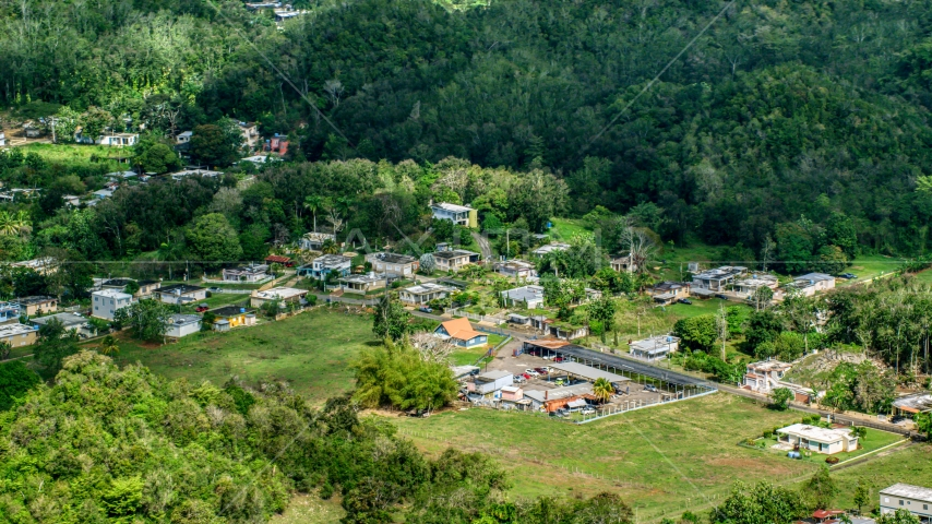 A group of rural homes surrounded by trees, Arecibo, Puerto Rico  Aerial Stock Photos | AX101_130.0000000F