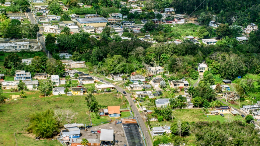 Rural neighborhood with trees, Arecibo, Puerto Rico Aerial Stock Photo AX101_131.0000000F | Axiom Images
