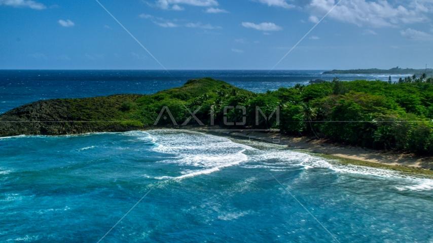 Waves rolling in toward the tree-lined coast of Arecibo, Puerto Rico  Aerial Stock Photo AX101_154.0000043F | Axiom Images