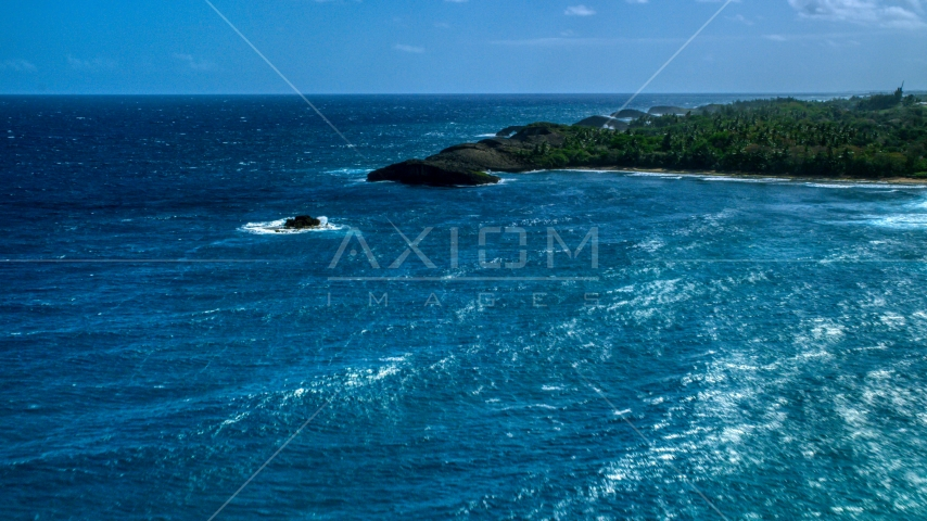 Clear blue water beside a tree-lined coast, Arecibo, Puerto Rico  Aerial Stock Photos | AX101_159.0000111F