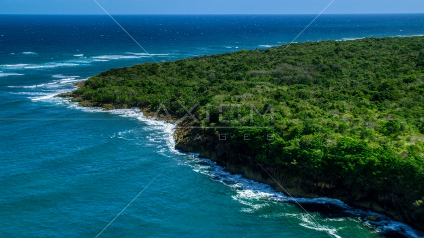 Stunning blue waters along a tree lined coast, Manati, Puerto Rico Aerial Stock Photos | AX101_196.0000000F
