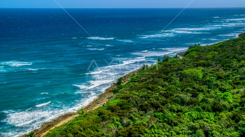 Waves rolling toward a tree lined coast, Manati, Puerto Rico Aerial Stock Photo AX101_196.0000289F | Axiom Images