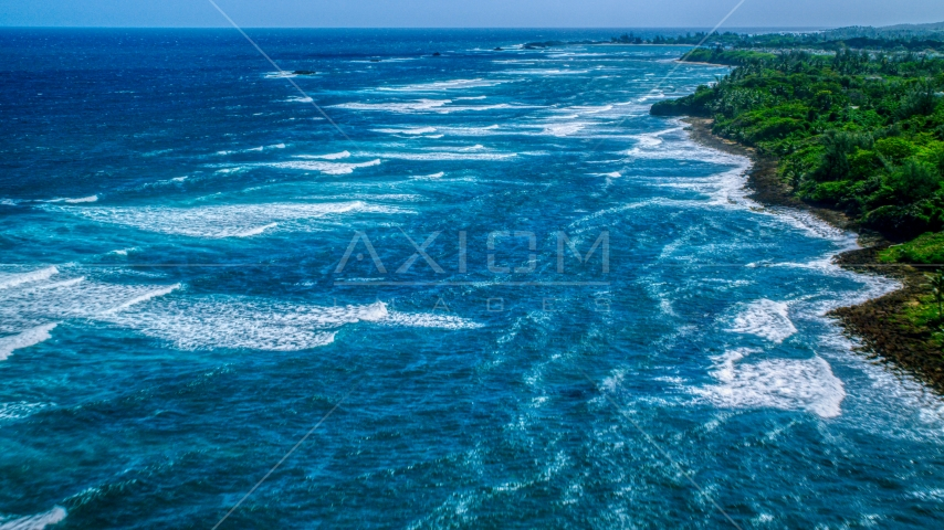 Waves rolling in toward a tree-lined Caribbean island coastline in Vega Baja, Puerto Rico  Aerial Stock Photos | AX101_197.0000207F