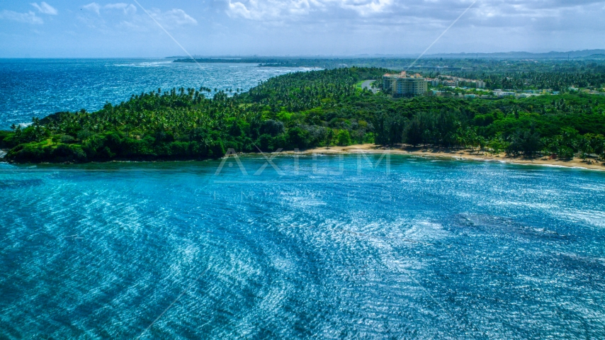 Palm trees and beach on a Caribbean island coast in Vega Alta, Puerto Rico  Aerial Stock Photos | AX101_209.0000258F