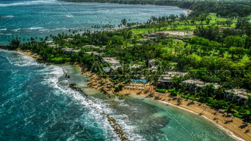 A Caribbean island resort and palm trees by the beach in Dorado, Puerto Rico  Aerial Stock Photo AX101_214.0000182F | Axiom Images