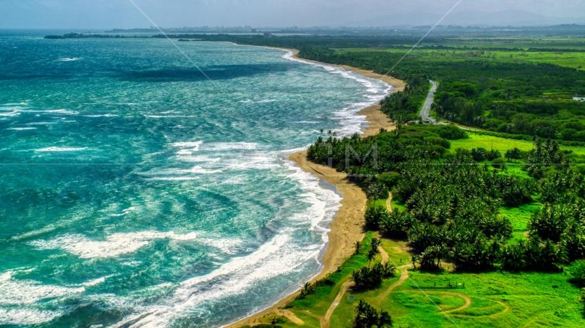 An island beach and palm trees in the Caribbean, Dorado, Puerto Rico  Aerial Stock Photos | AX101_220.0000234F