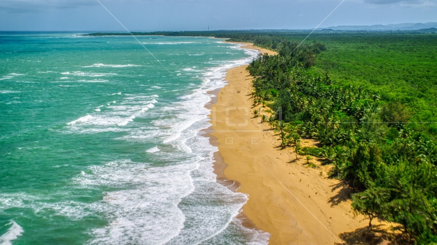 Waves rolling toward a tree lined Caribbean island beach, Loiza, Puerto Rico  Aerial Stock Photos | AX102_021.0000000F