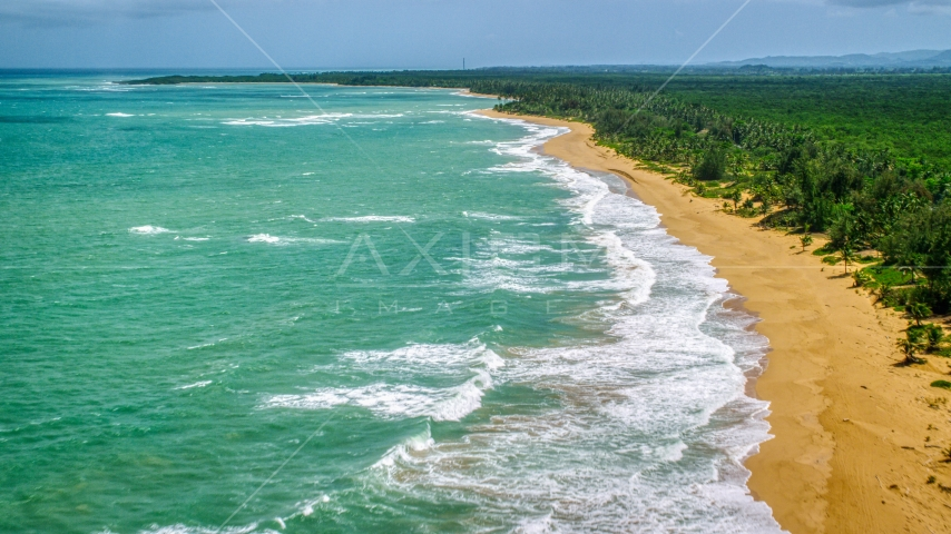 Waves rolling in to an empty Caribbean island beach in Loiza, Puerto Rico  Aerial Stock Photos | AX102_022.0000119F
