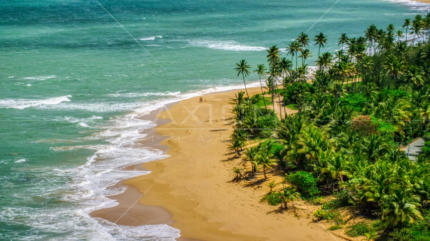 A couple strolling on the beach by turquoise water, Loiza, Puerto Rico Aerial Stock Photos | AX102_024.0000000F