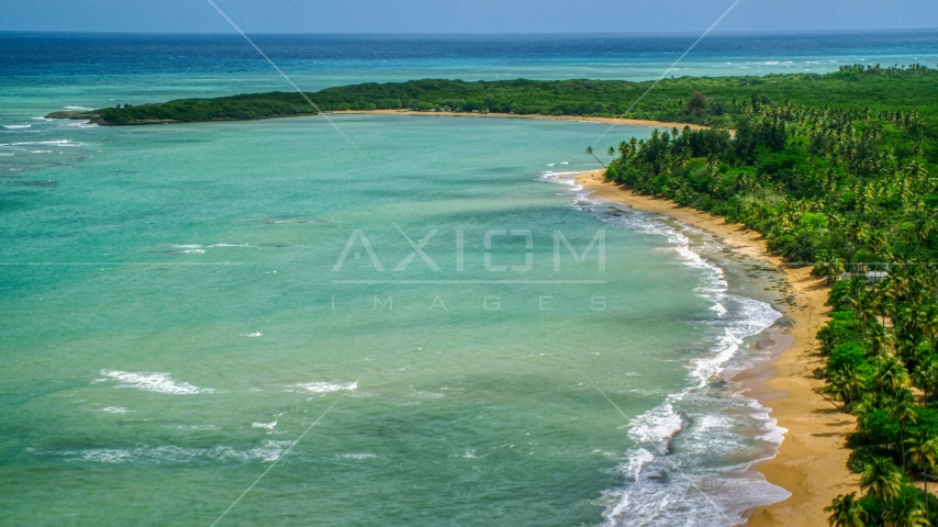 Beach with palm trees and turquoise water, Loiza, Puerto Rico Aerial Stock Photos | AX102_025.0000209F