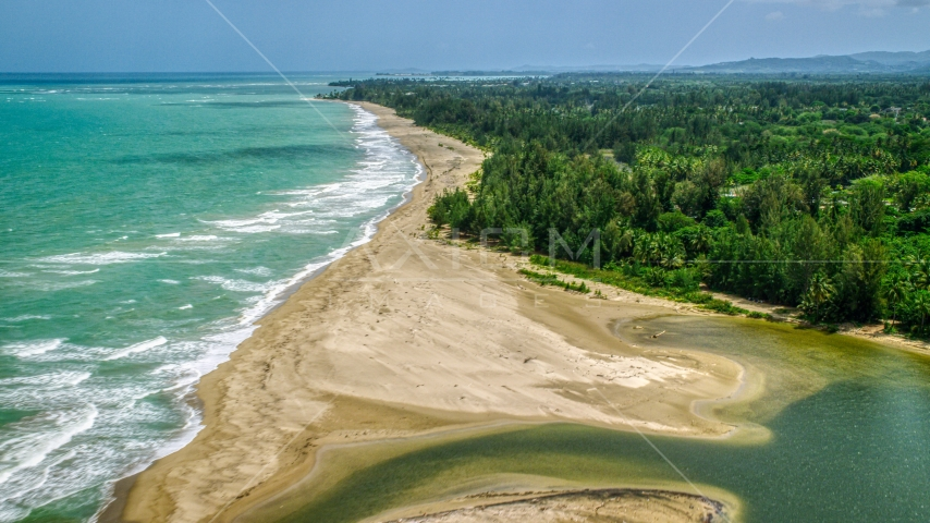 Jungle by an empty beach and turquoise waters, Loiza, Puerto Rico  Aerial Stock Photos | AX102_030.0000252F