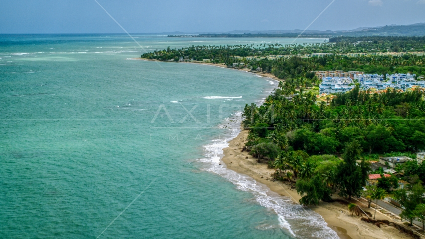 A tree lined beach and crystal turquoise waters near condos in Loiza, Puerto Rico Aerial Stock Photos | AX102_035.0000049F