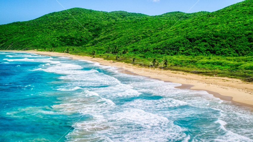 Turquoise blue waters along a Caribbean beach and lush vegetative coast, Culebra, Puerto Rico  Aerial Stock Photos | AX102_117.0000000F
