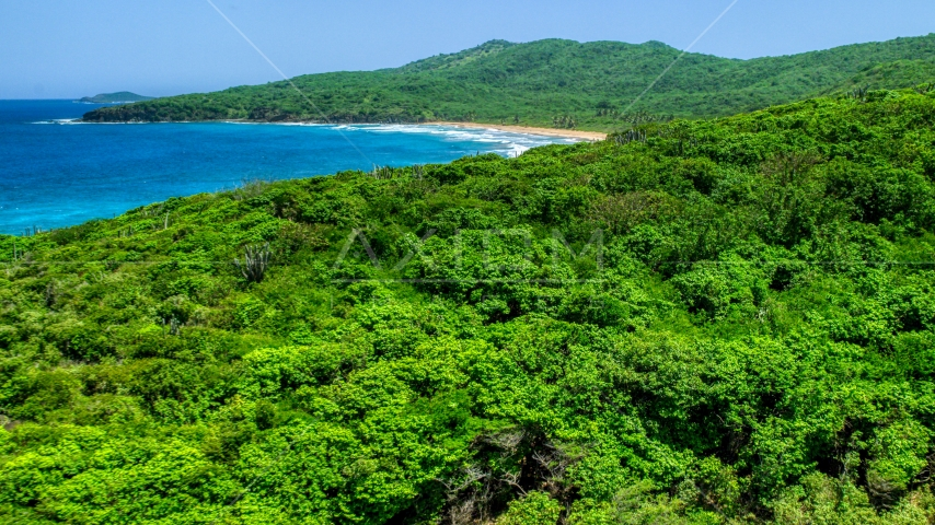 Coastal vegetation and sapphire blue waters, Culebra, Puerto Rico  Aerial Stock Photo AX102_121.0000158F | Axiom Images