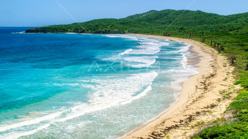 Coastal vegetation along a deserted Caribbean beach and sapphire blue waters, Culebra, Puerto Rico Aerial Stock Photo AX102_122.0000371F | Axiom Images
