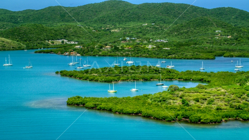 Sail boats in sapphire blue waters along tree covered coasts, Culebra, Puerto Rico Aerial Stock Photo AX102_141.0000000F | Axiom Images
