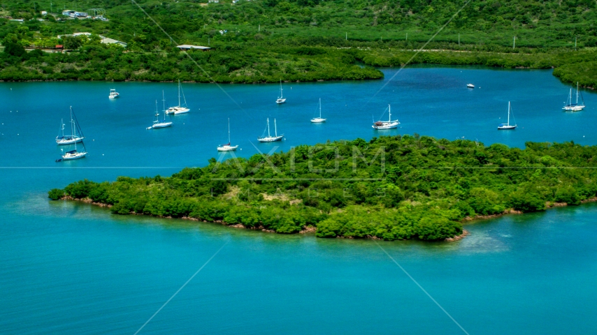 Group of sail boats in sapphire blue waters by tree covered coasts, Culebra, Puerto Rico Aerial Stock Photo AX102_141.0000223F | Axiom Images