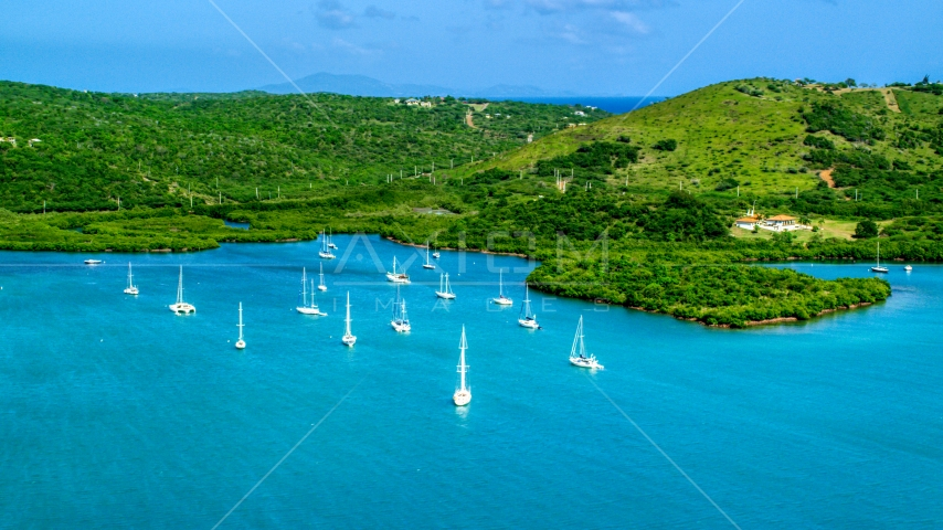 Group of sailboats in sapphire blue waters by an island coast, Culebra, Puerto Rico Aerial Stock Photo AX102_168.0000185F | Axiom Images