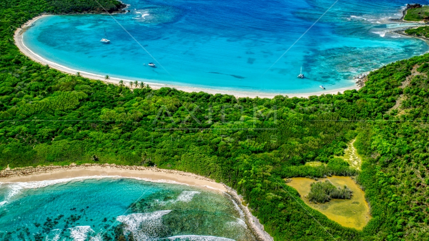 Turquoise waters and white sand Caribbean island beaches with trees, Culebrita, Puerto Rico Aerial Stock Photos | AX102_189.0000000F