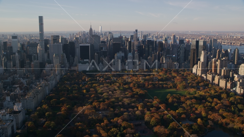 Central Park trees with autumn leaves beside Midtown skyscrapers at sunrise in New York City Aerial Stock Photos AX118_194.0000163F | Axiom Images