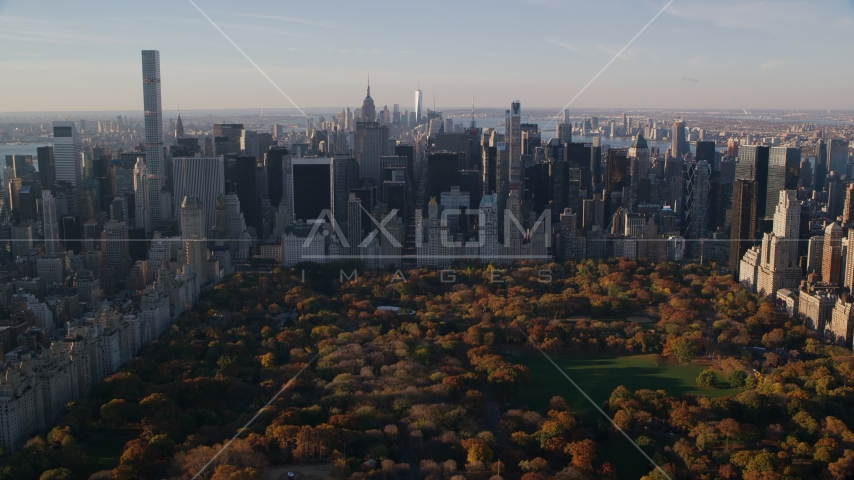 Autumn leaves on Central Park trees by Midtown at sunrise in New York City Aerial Stock Photos AX118_195.0000126F