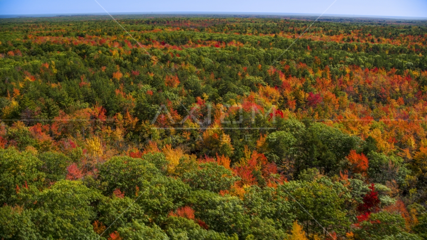 A colorful forest in autumn, Biddeford, Maine Aerial Stock Photos | AX147_283.0000024