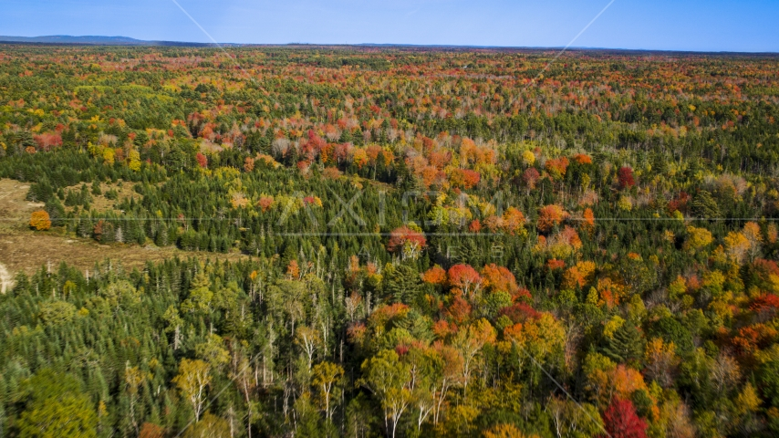 A colorful forest in autumn, Cushing, Maine Aerial Stock Photos | AX148_036.0000011