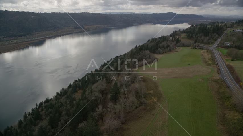 Cliff top trees overlooking the Columbia River, Washington Aerial Stock Photos | AX153_188.0000347F