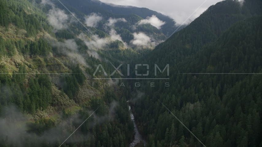 Eagle Creek Trail canyon, Cascade Range, Hood River County, Oregon Aerial Stock Photos | AX154_042.0000275F