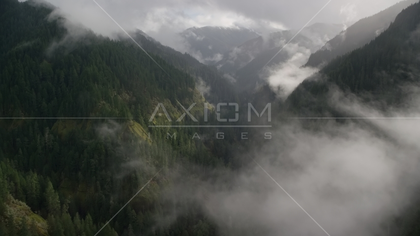 Misty clouds over Eagle Creek Trail in the Cascade Range, Hood River County, Oregon Aerial Stock Photos | AX154_046.0000331F
