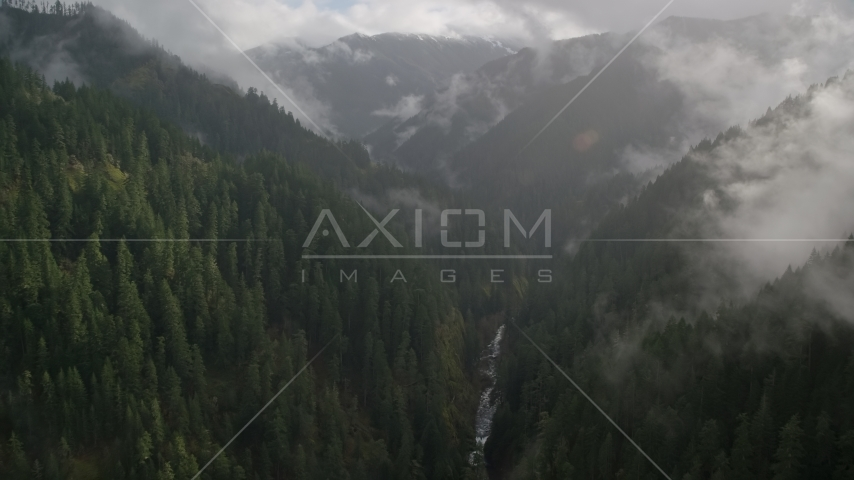 A misty canyon and Eagle Creek Trail, Cascade Range, Hood River County, Oregon Aerial Stock Photos AX154_048.0000236F