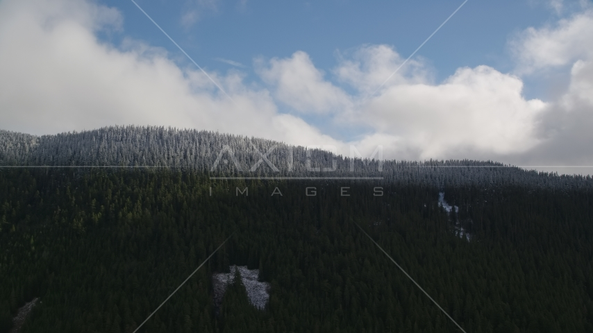 The snow line and snowy evergreen trees atop a mountain ridge, Cascade Range, Hood River County, Oregon Aerial Stock Photos | AX154_058.0000000F