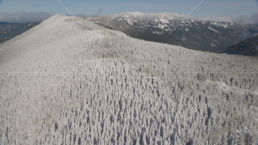 Forest on a snowy mountain ridge in the Cascade Range, Oregon Aerial Stock Photos | AX154_102.0000220F