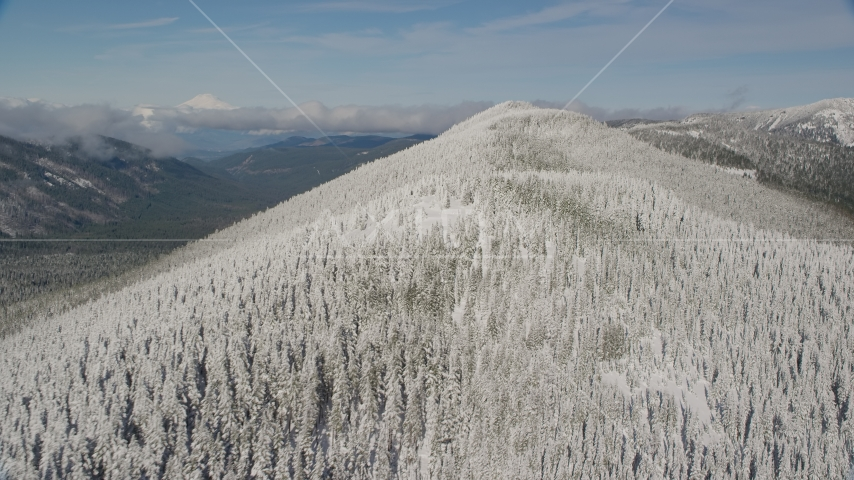 Frozen forest on a mountain ridge, Cascade Range, Oregon Aerial Stock Photos | AX154_103.0000163F