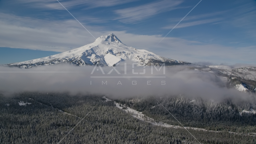 Snow-capped peak and low clouds over forest, Mount Hood, Cascade Range, Oregon Aerial Stock Photos | AX154_119.0000258F