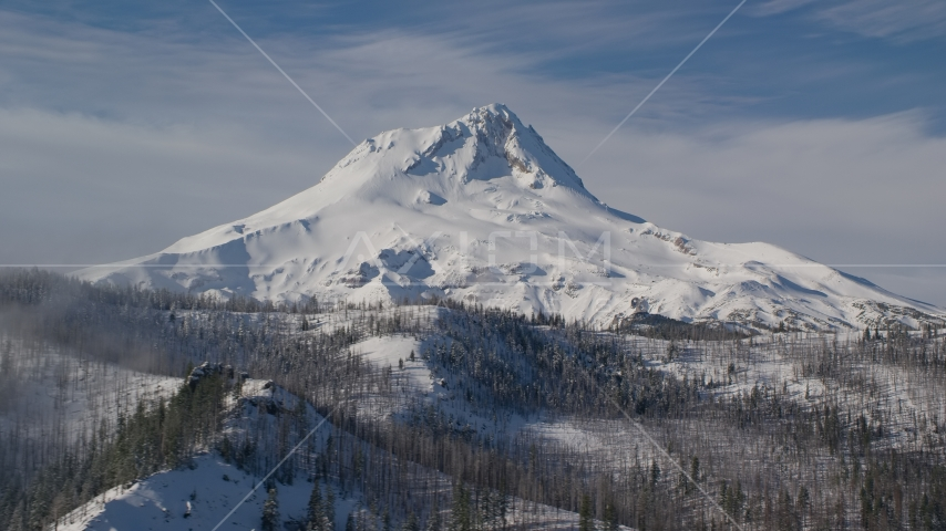 Mountain ridge with dead trees in the foreground near Mount Hood, Cascade Range, Oregon Aerial Stock Photos | AX154_122.0000000F