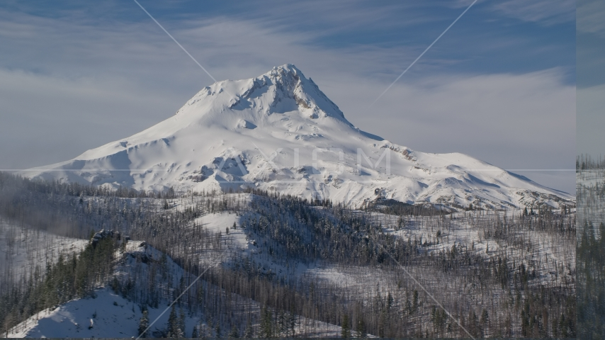 Mountain ridge with dead trees near Mount Hood, Cascade Range, Oregon Aerial Stock Photos | AX154_122.0000233F
