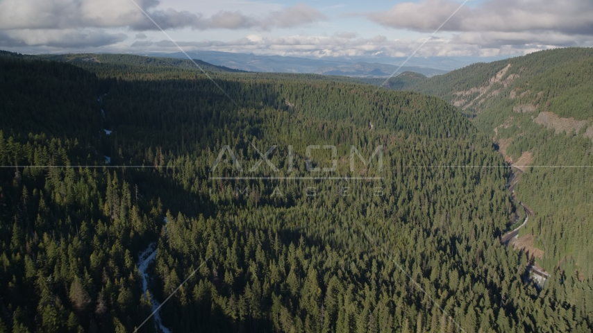 A canyon and evergreen forest near Highway 35, Cascade Range, Hood River Valley, Oregon Aerial Stock Photos | AX154_127.0000170F
