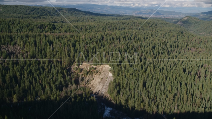 An evergreen forest in the Cascade Range, Hood River Valley, Oregon Aerial Stock Photos | AX154_129.0000284F