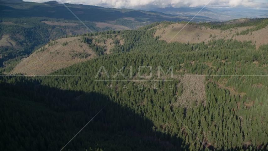 An evergreen forest and clear cut logging areas near Dee, Oregon Aerial Stock Photos | AX154_145.0000127F