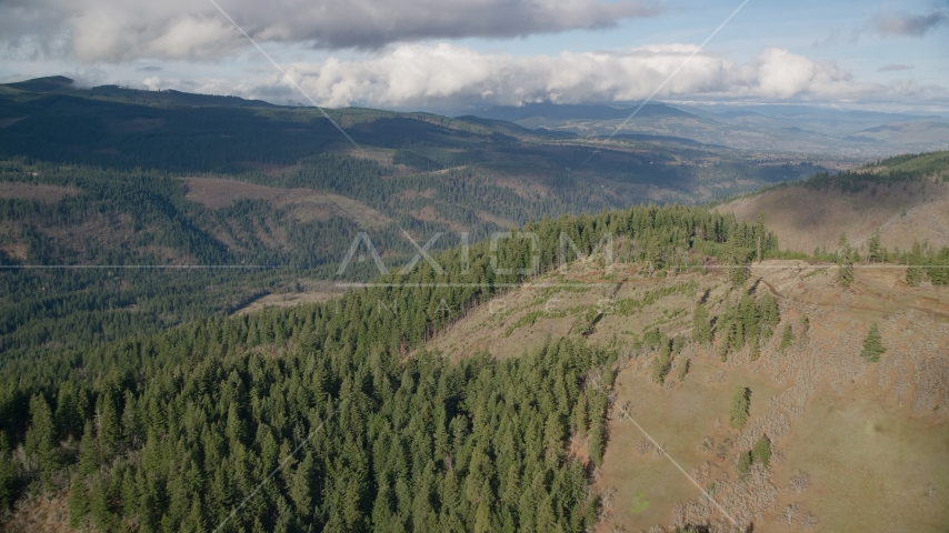 Evergreen forest and logging areas, Dee, Oregon Aerial Stock Photo AX154_146.0000383F | Axiom Images
