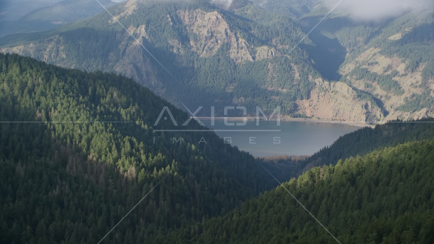 The Columbia River Gorge and evergreen forest mountains, Hood River, Columbia River Gorge, Oregon Aerial Stock Photos AX154_152.0000192F